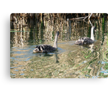 Gliding through abstracted waters. Canvas Print