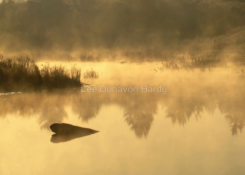 The Golden Morning by Lee Donavon Hardy