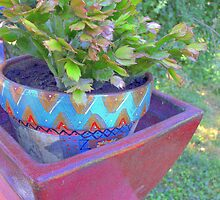 Cache pots and cacti by patti haskins