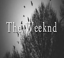 The Weeknd by whiteponyjudy