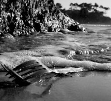 Fork Here to Eternity by Jirrupin