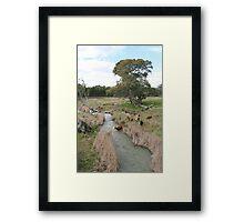 """""""Cattle Crossing"""" Framed Print"""