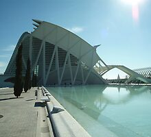 The Science Museum, Arts & Sciences Park, Valencia by Fred Shively