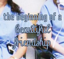 Meredith and Cristina - Beautiful friendship Sticker