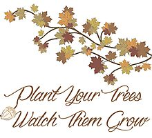 Plant Your Trees Photographic Print
