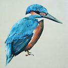 Kingfisher by Arzeian