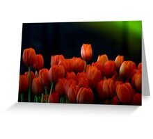 Tulip Splash Greeting Card