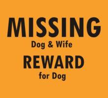 Missing by Sharon Stevens