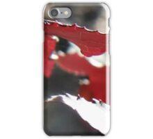 Sweet Gum Leaves in Sunlight I iPhone Case/Skin