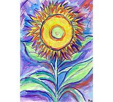 Flagler Beach Sunflower Photographic Print