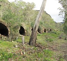 A few of the 80 Beehive Kilns at Newnes Historic Ruins, Blue Mountains. N.S.W. by Rita Blom