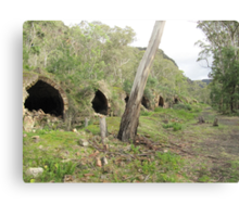 A few of the 80 Beehive Kilns at Newnes Historic Ruins, Blue Mountains. N.S.W. Canvas Print