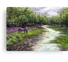 Denny Wood Canvas Print