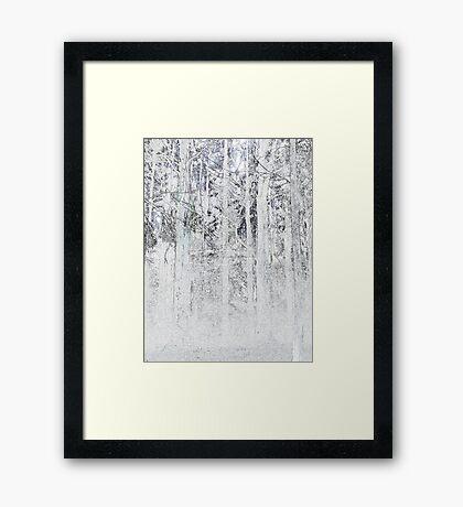 Spiderweb omongst the ashes Framed Print