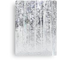 Spiderweb omongst the ashes Canvas Print