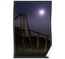 Moonlit paddock Poster