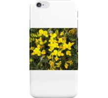 Yellow Little Flowers iPhone Case/Skin