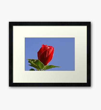 Call It Love Framed Print