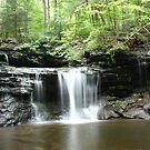 PA State Parks: Ricketts Glen SP by James Wheeler