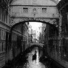 The Bridge of Sighs by Donna Corless