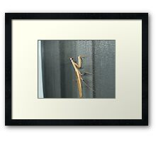 unexpected guest Framed Print