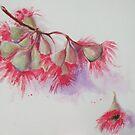 Gum tree Rowi Art by Rowi
