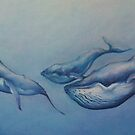 Whale Pod by Rowi