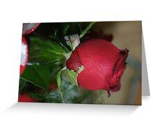 One Rose; La Mirada, CA USA Greeting Card