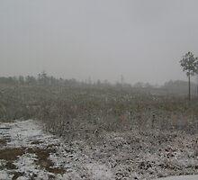 snowy open by Mallory Harris