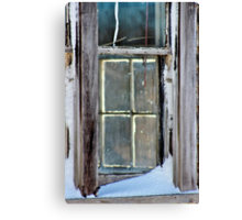 A Window on a Window Canvas Print