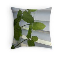Outbound Throw Pillow