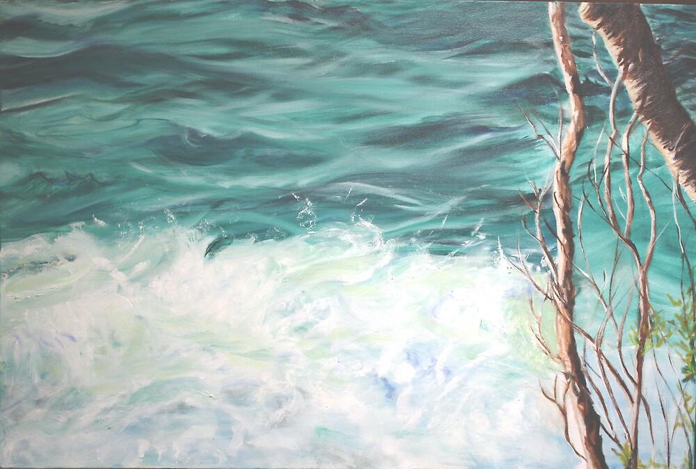 Noosa Waters by gunnelau