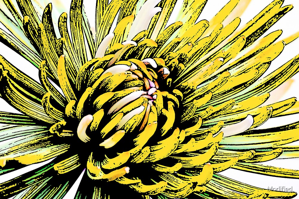 Yellow Crazy Flower by Modified