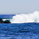 Shark Island - Cronulla - The Drop by Dave Reid