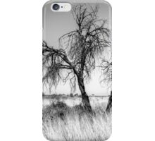 Beside the track,Namibia. iPhone Case/Skin