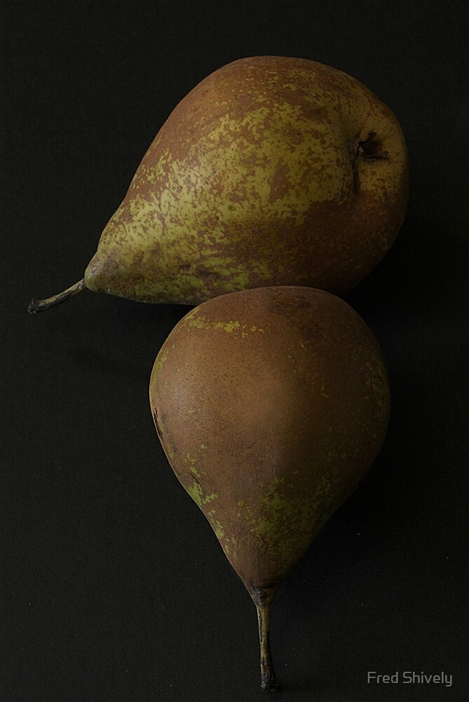 Pears 1 by Fred Shively