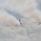 wing walker in the cloud by carlawool