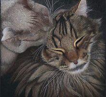 Cat Love by Rasberry6