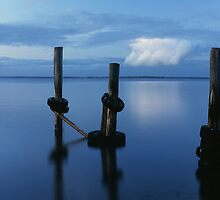 Westernport poles by Tony Middleton
