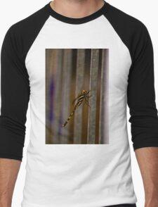 dragon fly  Men's Baseball ¾ T-Shirt