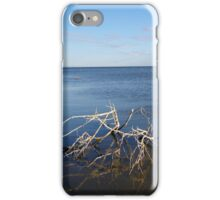 Tumbleweed, Salton Sea iPhone Case/Skin