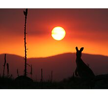 Aussie Sunset Photographic Print