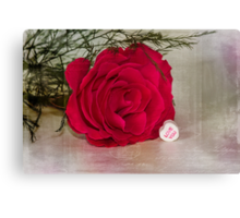 Love YOU Rose  Canvas Print