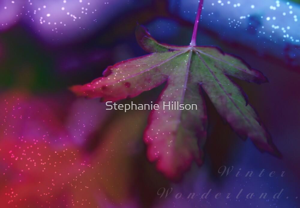 Winter Wonderland  by Stephanie Hillson