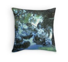 Stockton Bight Wetland by Bernadette Smith (c) Throw Pillow