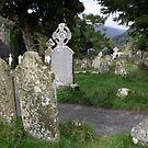 Glendalough cemetery view 1 by John Quinn