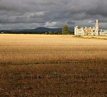 Ducketts Grove castle view  by John Quinn