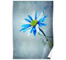 Blue & White  Poster