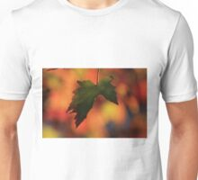 Kansas Colorful Fall Leave's Unisex T-Shirt