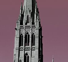 St Paul's Cathedral, Melbourne 2 by haymelter